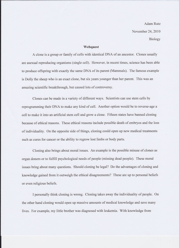 Position argument paper - Essay Writing Help – An Striking ...